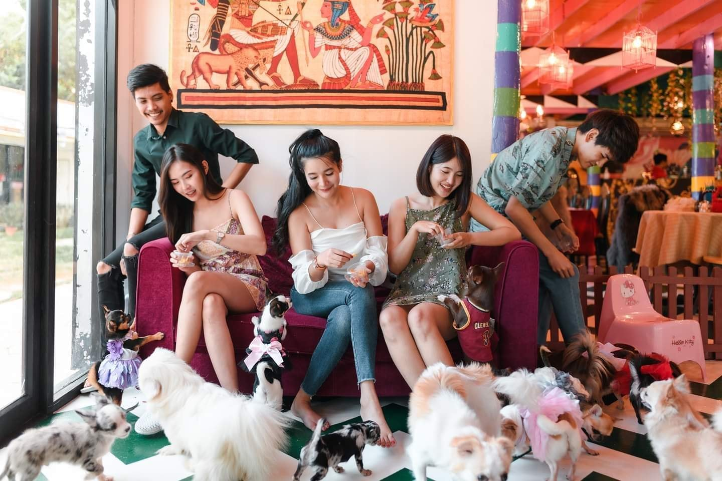 The Little Dog Cafe Huahin